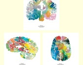 "Human Brains Print Set - Three 8.5"" x 8.5"" Watercolor Prints - Neuroscience, Neurology, and Psychology - Brain Artwork by J. Sayuri"