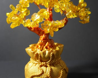 Money Tree | Feng Shui Tree | Lucky Tree | Fortune Tree