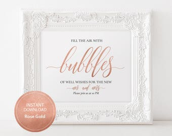 Editable PDF 8x10 Rose Gold Bubbles of Well Wishes Sign Calligraphic Wedding Bubbles Send Off Template DIY Printable Send Off Sign #DP140_18