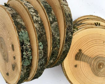 15 PCS |  Wooden Circles | Wooden Slices | Rustic Wood Slices For DIY | Ash Tree | Wood Discs For Craft|
