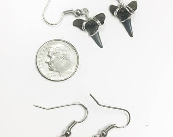 Fossil Shark Tooth Dangle Earrings