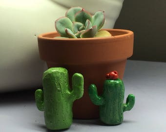 Cactus Magnets - pair of polymer clay His & Her magnets