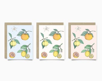 Cards - citrus Collection