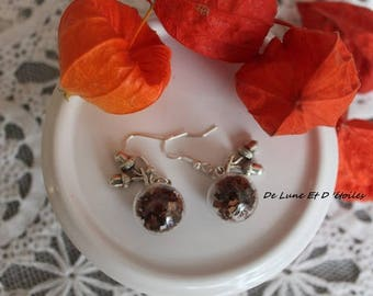 Globes fall earrings