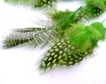 Small dyed Feathers_PP034655887/3254_ Pack little Green dyed point feathers of 4-12 cm/ pack 16-20 pcs