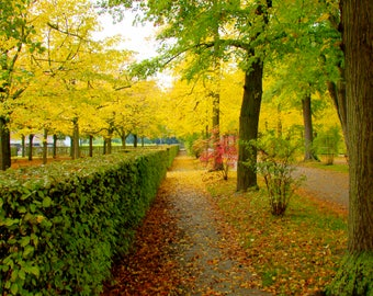 Wurzburg Garden Walkway (Vertical)