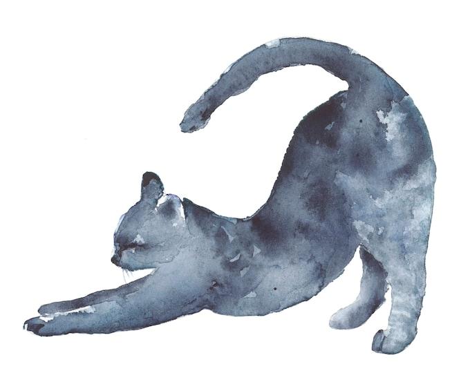 Indigo Cat 2