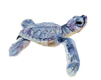 Water Color Seaturtle