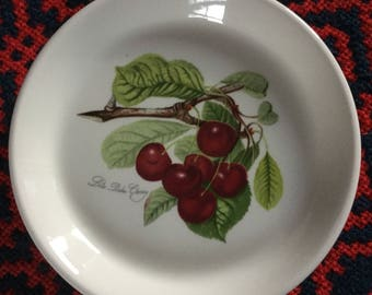 Portmeirion Pomona tiny plate - Late Duke Cherry
