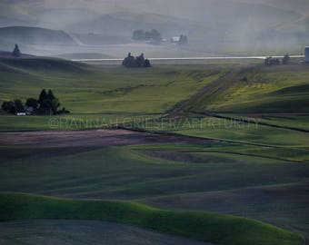 Silver Rain: Fine Art Photography