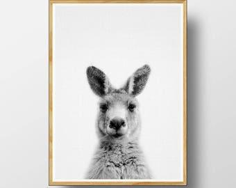 Kangaroo Print, Australian Animal Print, Nursery Animal Print, Nursery Animals, Kangaroo Wall Art, Nursery Printable, Nursery Art Print