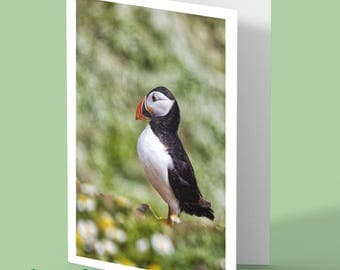 Puffin Greeting Card - puffin - greetings card - personalised card -puffin card - any occasion card - Skomer Island - bird card - auk