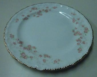 Vintage Dessert Plate Pope Gosser USA China Florence Pattern #3025