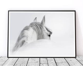 White Horse Photography, Horse Wall Art, Gift for Horse Lover, Horse Art Print, Black and White Horse Print, Master Bedroom Art