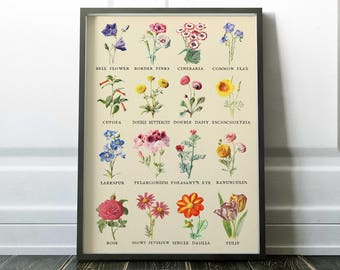Best 20  Floral posters ideas on Pinterest | Typography definition ...