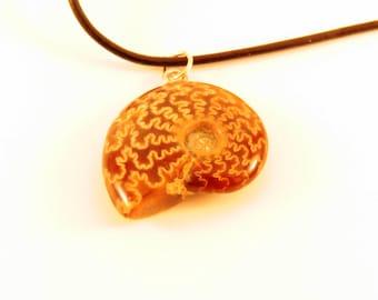 Fossilized Ammonite Pendant Necklace