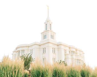 Payson Utah Temple 14