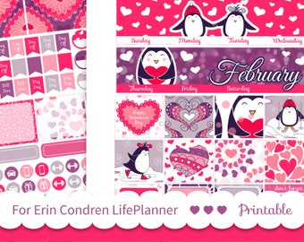 FEBRUARY MONTHLY KIT for Erin Condren 2019 Lifeplanner ™ Valentine's Day planner stickers printable Planner girl