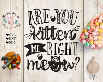 cat svg, pets svg, kitten svg, meow svg, are you kitten me right meow svg, cat quotes, funny svg, girls svg, svg designs, t-shirt design