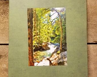 Creek between trees Jackson Wyoming scene, Grand Teton National Park