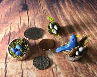 Acorn Fairy Bird Nest