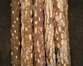 """1.25"""" diameter x 12"""" All Natural Nubby Wood Bird Perch"""