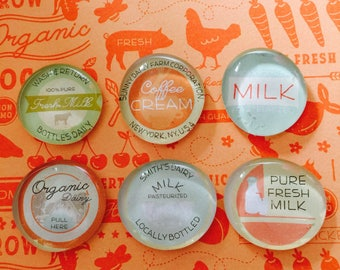 Milk magnets, glass magnets, refrigerator magnets, cute gift, party favor, under 15 dollars, kitchen decor, farmers market