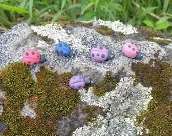 Ladybug magnets set of 5 / ladybird / kitchen decor / fridge magnet / free shipping