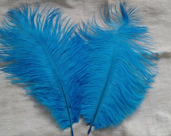 set of 2 blue ostrich feathers
