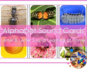 Montessori Alphabet Image Sound Cards