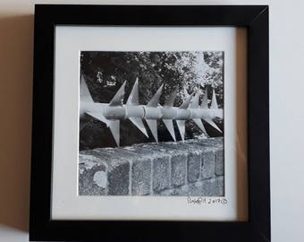 Spikes black and white framed photograph