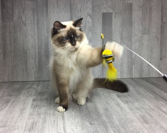 Cat toy | Pull out fly wand cat teaser toy | Fish cat toy | Bird cat toy |Yellow Clownfish | Interactive cat toy |