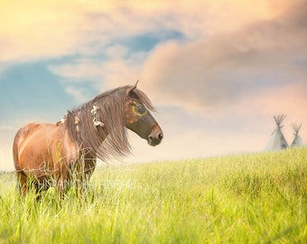 Native American Pony, Horse, Tipi, Feather, Landscape, digital Backdrop, Pocahontas, Art, Child, Composing, Photography, Fantasy, Print,