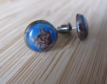 "Black Cat earrings Tiger on a blue background ""Pirouline"" 1 cm diameter"