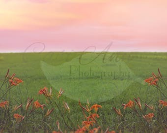 Warm Summer Sunset Digital Photography Backdrop Background