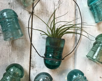Hanging Insulator for airplants, succulents, and candles