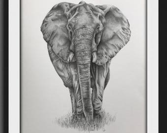 Realistic African elephant, the big five, black and white, limited edition, hipster, bedroom wall print, safari art, african art, lounge art