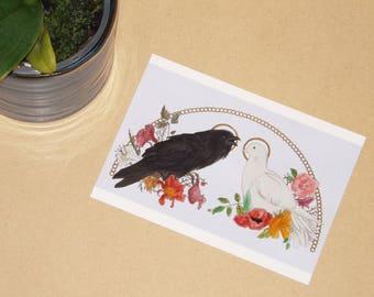 Dove and Crow - ART PRINT