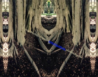 postcard art, photography cards, 5pack cards,risen tree jewels bats, cat, tree mystic, tree art, home decor art