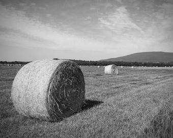 Hay Field, Cavanal Hill, Poteau, OK, Black and White