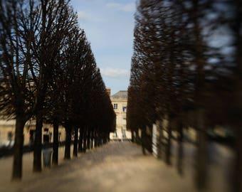 Impressionist Paris, Place de la Concorde, Paris Winter Light, French Architecture, Tuileries Garden, Gary Brewster