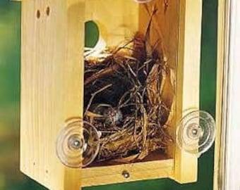 See Through BirdHouse