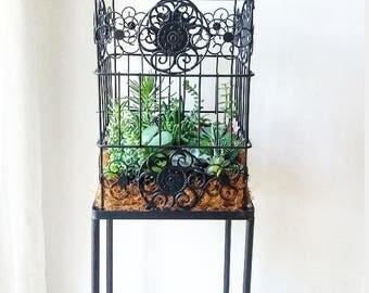 Black birdcage succulent planter with base | Home decor | Vintage | Gift