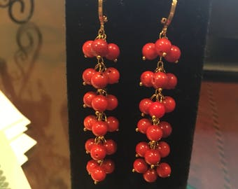Red Coral cluster  Earrings