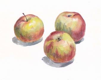 Original botanical watercolor / Still life with three apples on white background / Red apples / Small picture / realistic fruit art