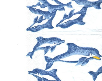 Blue Dolphins paper towel