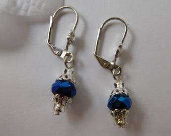 Blue Stud Earrings