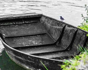 Boat Coulon - Poitevin Marsh bird