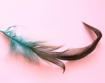 pretty dark blue feathers, between 10 and 15 cm, set of 5