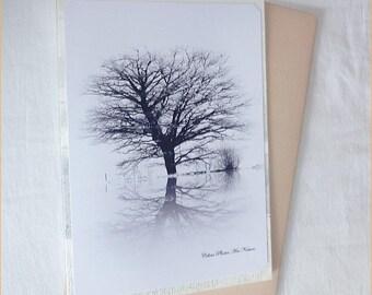 """Carte double de Céline Photos Art Nature """"Rêverie blanche et noire"""""""